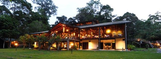 Image courtesy of Borneo Nature Tours