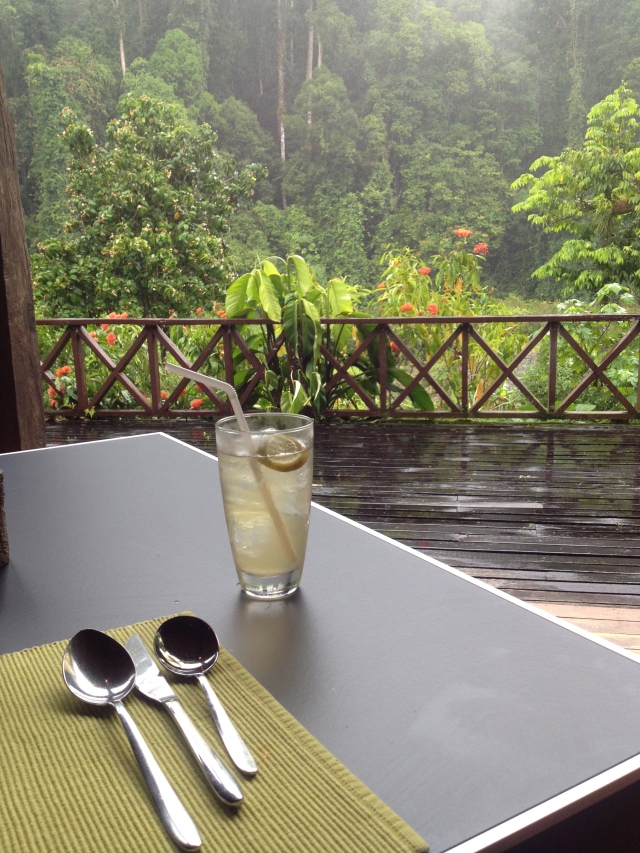 View from Borneo Rainforest Lodge