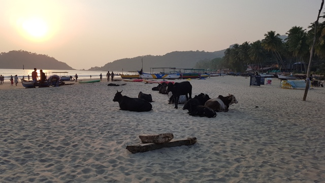 Sunset at Palolem beach, Goa